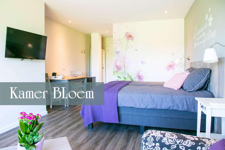 Kamer Bloem | Bed and Breakfast In ons Straatje, Kruisstraat Rosmalen - Noord-Brabant