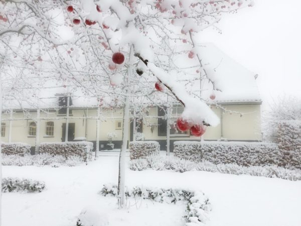 Winter - Kerst - koffie | Bed and Breakfast In ons straatje Rosmalen