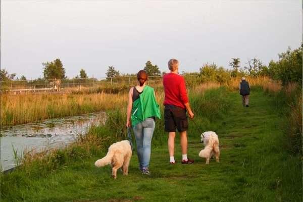 In de omgeving • Klik, Print en Wandel : Wandelroutes in Nederland | Bed and Breakfast In ons straatje, kruisstraat 52 Rosmalen- Noord-Brabant